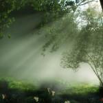 Meditazione del giorno: Serenità di fronte alla morte