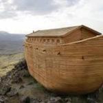 Meditazione del giorno: Un'arca per Noè.