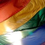 UNIONE GAY? NIENTE PANICO!