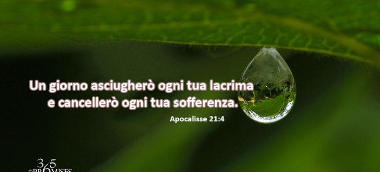 Promessa per oggi: Un giorno asciugherò ogni tua lacrima e cancellerò ogni tua sofferenza.